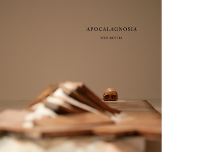 Apocalagnosia