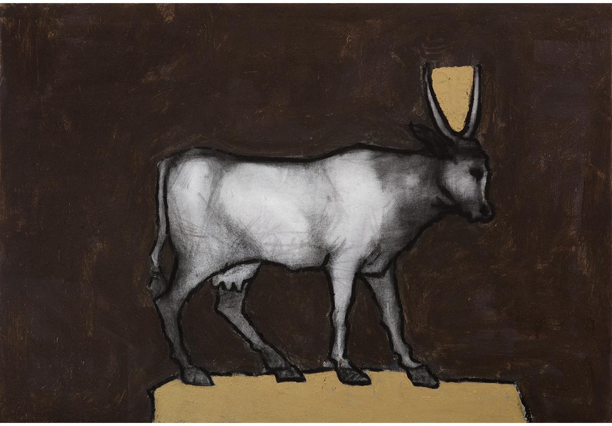 - Cash Cow, 2016-17