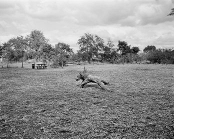 A picnic place, Kruger National Park
