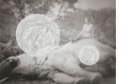WHITENESS ETHNOGRAPHY [02]