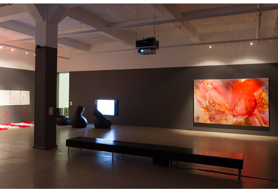 Installation view with works by Buhlebezwe Siwani, Akram Zaatari and Penny Siopis, Stevenson, Cape Town