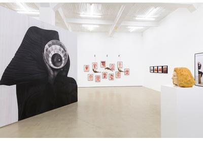 Installation view with works by Zanele Muholi, Barthélémy Toguo, Berni Searle, Paul Mpagi Sepuya and Claudette Schreuders