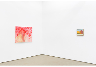 20.03 Installation view with works by Penny Siopis and Etel Adnan