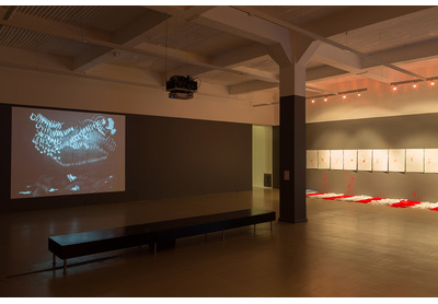 Installation view with works by Robin Rhode and Buhlebezwe Siwani, Stevenson, Cape Town