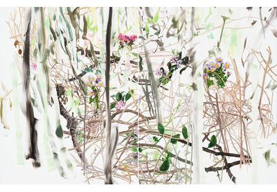 Undergrowth 1