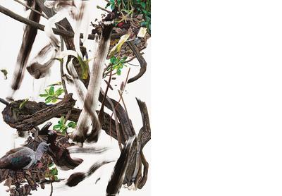 Undergrowth 6